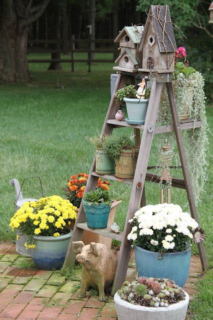 old ladder dressed with birdhouses & plants