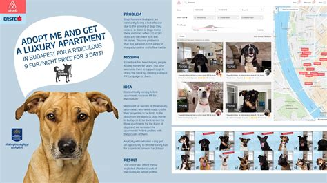 Erste Bank Digital Advert By WPP: AirBNB for dog lovers